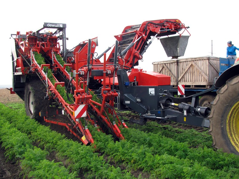 Trailed 2-row top lifting harvester with hedgehog unit and discharge elevator