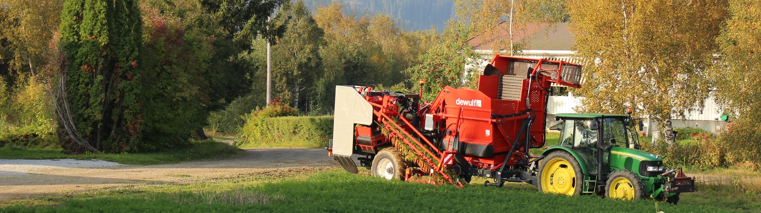 Trailed 1-row top lifting harvester with bunker