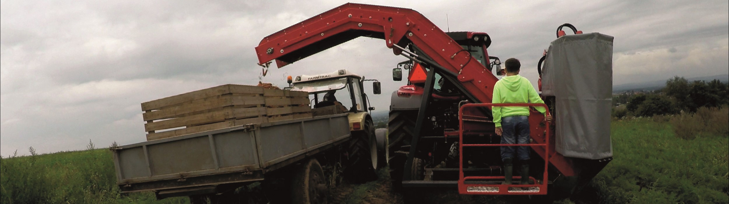 Mounted 1-row top lifting harvester with discharge elevator