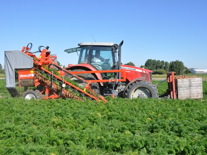 Mounted 1-row top lifting harvester with fixed forks