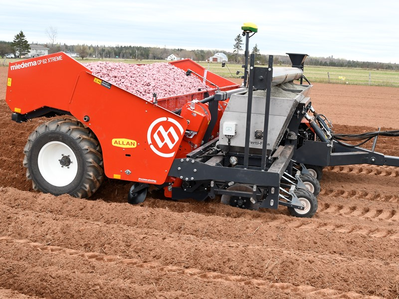 Trailed 6-row cup planter